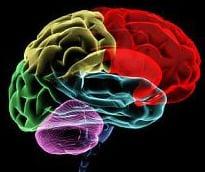 色情成瘾改变了大脑