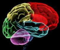 Porn addiction changes brains