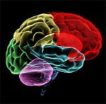 Dopamina este cheia înțelegerii dependențelor de comportament, cum ar fi jocurile de noroc și pornografia