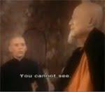 Kung Fu stimuli