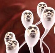 tired sperm